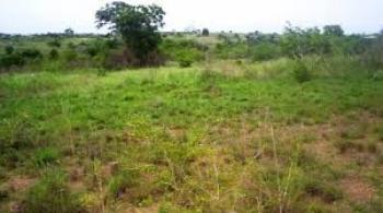 Full Plot of Residential Land Measuring 750sqm, River Valley Estate, Ojodu, Lagos, Residential Land for Sale