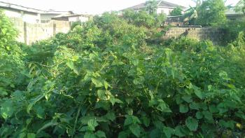 Land with Deed of Assignment, Ishagamu, Ikenne, Ogun, Mixed-use Land for Sale