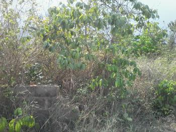 Plots of Land, Along Idi-orogbo Village Road, Agbajege Village, Obafemi Owode, Ogun, Commercial Land for Sale