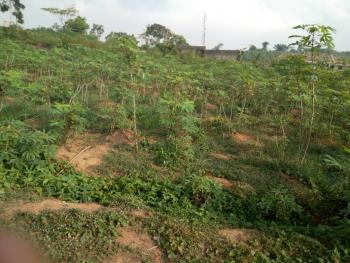 2 Plots, Adamo, Itokin Road, Ikorodu, Lagos, Residential Land for Sale
