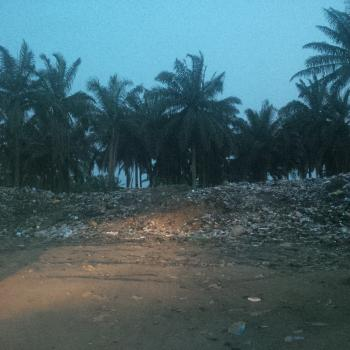 20 Acres of Land, Ifo, Ogun, Residential Land for Sale