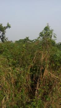 Acres of Land, Olufuwape Town, Off Lagos/ibadan Express Rd, Ogun State Olufuwape Mowe, Obafemi Owode, Ogun, Mixed-use Land for Sale