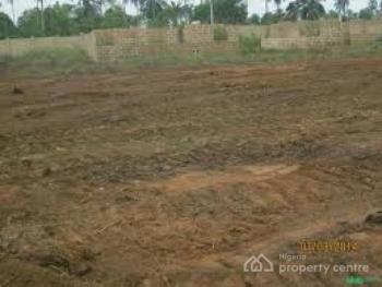 Land Along Lekki Free Trade Zone Road for Sale, Estate, Along Lekki Free Trade Zone Road with C of O, Ibeju Lekki, Lagos, Land for Sale