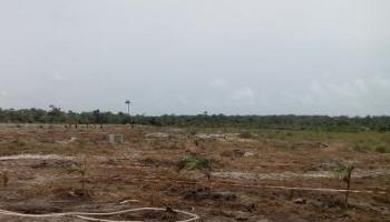3900sqm Dpr Approved Land for Filling Station for Urgent Sale, Directly Along The Expressway, Ajah, Lekki, Lekki Expressway, Lekki, Lagos, Commercial Land for Sale