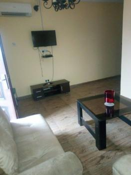 Well Finished and Tastefully Done Serviced and Furnished Mini Flat, Off Agungi Ajiran Road, Inside a Private Estate, Agungi, Lekki, Lagos, Mini Flat for Rent