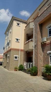 Lovely and Well Maintained 3 Bedroom Serviced Apartment with a Room Bq, Fitted Kitchen, Etc, Off Aminu Kano Crescent, Wuse 2, Abuja, Flat for Rent