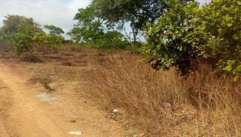 1300sqm Land with C of O in Guzape, Guzape District, Abuja, Residential Land for Sale