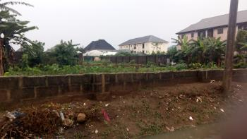 Genuine Lands with Federal Light, Opposite Dominion City Estates, Off Nta Rd, Port Harcourt, Rivers, Residential Land for Sale
