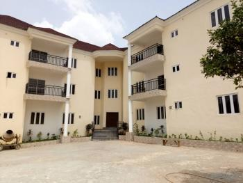 Newly Built 6 Units of Serviced Flats with Air Conditioning, Generator, Swimming Pool and One(1)bedroom Bq, Opposite Foursquare Gospel Church, Asokoro District, Abuja, Mini Flat for Rent