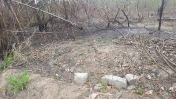 32 Acres of Land, Ojoo, Akinyele, Oyo, Mixed-use Land for Sale
