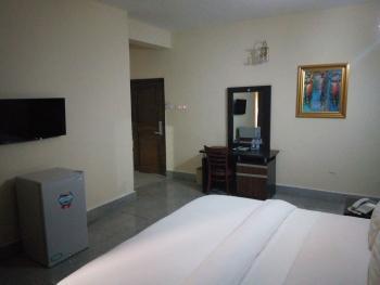 Furnished 1 Bedroom Apartment, Area 11, Garki, Abuja, Mini Flat Short Let