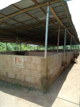 a Functional Pig Farm, Ajasa Ala Road, Ifo Coker, Ifo, Ogun, Mixed-use Land for Sale
