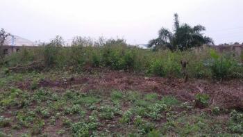 250 Plot with Survey and Receipt, Itafade Idiroko Main Road, Ifo, Ogun, Mixed-use Land Joint Venture