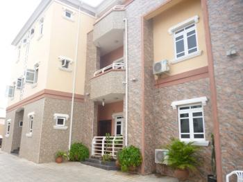 Luxury and Serviced 3 Bedroom Flat with Excellent Finishes, Awande Close, Off Aminu Kano, Wuse 2, Abuja, Flat for Rent