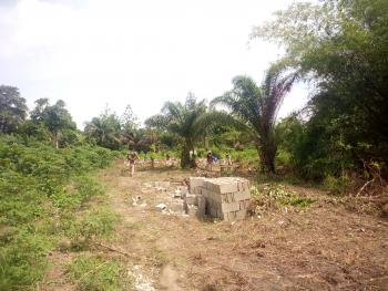 Land, Nabu Road, Oko Afo Extension, Off Badagry Expressway, Oko Afo, Badagry, Lagos, Mixed-use Land for Sale