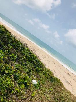 Beachfront Waterfront Land for Sale Lekki Ajah Atican Beach, Atican Beach, Ogombo, Ajah, Lagos, Residential Land for Sale