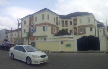 Brand New and Tastefully Finished Duplexes with Bq, Ikate Elegushi, Lekki, Lagos, Terraced Duplex for Rent