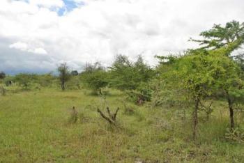3000 Sqm Waterfront Land, Banana Island, Ikoyi, Lagos, Mixed-use Land for Sale