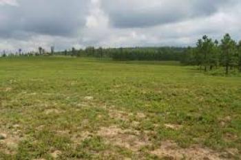 6000sqm Land, on Bourdillon, Ikoyi, Lagos, Mixed-use Land Joint Venture