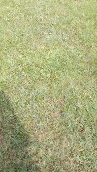 11,000 Hectares of Land, Akodo Ise, Akodo Ise, Ibeju Lekki, Lagos, Mixed-use Land for Sale