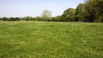1 Acre of Farm Land, Omu Igbile, Ijebu, Odogbolu, Ogun, Mixed-use Land for Sale