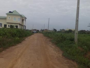 Land with Court Judgement,survey Plan and Deed of Assignment, Boys Town, Ipaja, Lagos, Residential Land for Sale