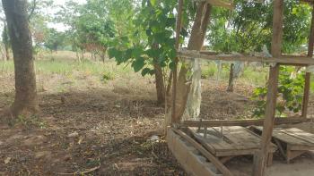 Fenced Farm Land with Borehole and Storage House Plus Security House, By Biazi, Across Peze Communities Kugabonku Kubwa, Off Arab Road, Kubwa, Abuja, Mixed-use Land for Sale
