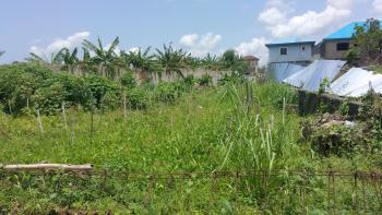Half Plot of Land Fenced Round and Gated in Millenium Estate, Oke Alo Gbagada, Millenium Estate, Oke Alo Gbagada, Gbagada, Lagos, Residential Land for Sale