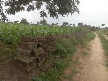2 Plots of Land, Eleme Junction, By Igbo-etche Road, Rumuokwurusi, Port Harcourt, Rivers, Residential Land for Sale