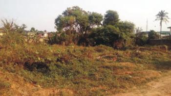 4800sqm of Land at Ring Road, Ring Road, Challenge, Challenge, Ibadan, Oyo, Commercial Land for Sale
