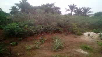 One Plot of Land, Ofulonu, Nsukka, Enugu, Mixed-use Land for Sale