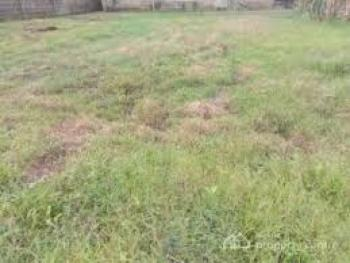 2,400 Square Meters Plot of Land, Palace Road, Oniru, Victoria Island (vi), Lagos, Residential Land Joint Venture