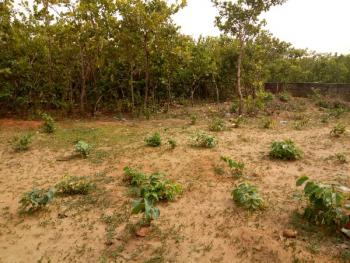 1164 Sqm of Residential Plot of Dry Land, Behind Trem Church Life Camp, Dape, Abuja, Residential Land for Sale