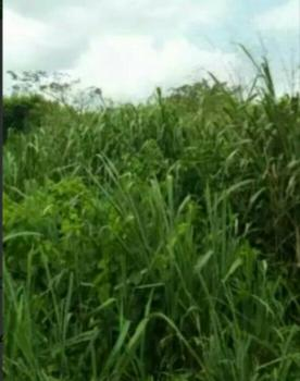 14.08ha of Land, Kyami, Abuja, Commercial Land for Sale