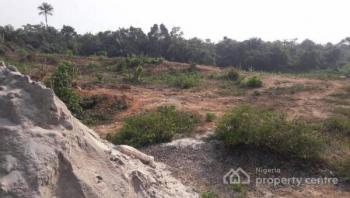 Plots of Land for Sale Along Epe-ikorodu Expressway (cedarwood City  Estate, Epe), Epe Ikorodu Expressway, Epe, Lagos, Mixed-use Land for Sale