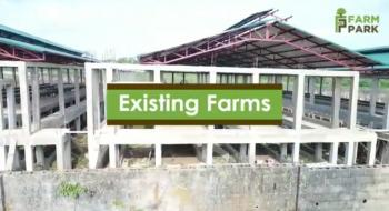 Farm Park, Igbonla Road, Epe. Farmland for Agricultural Enterprise, Igbonla Road, Ilara, Epe, Lagos, Industrial Land for Sale