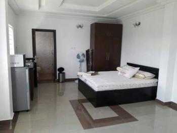 Fully Furnished Studio Apartment, Nike Art Gallery Road, Ikate Elegushi, Lekki, Lagos, Self Contained (studio) Flat for Rent