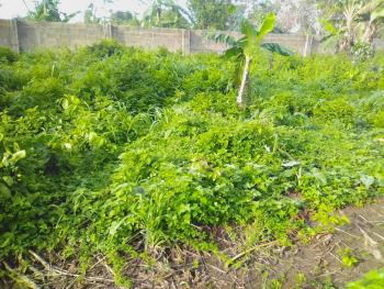 Half Plot of Land, 25 Treasure Park Estate Area, Simawa, Ogun, Residential Land for Sale