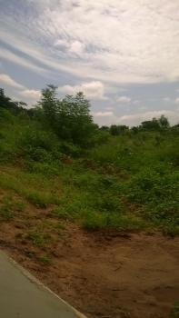 Ten [10] Plots of Commercial Land, Kwara State University [kwasu ], Malete Town, Moro, Kwara, Commercial Land for Sale