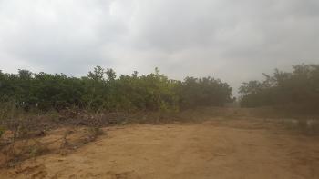 Land, After Goldcrown Estate, Katampe (main), Katampe, Abuja, Residential Land for Sale