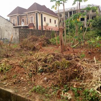 Full Plot of Land 60x120, Diamond Estate, Command, Ipaja, Lagos, Land for Sale