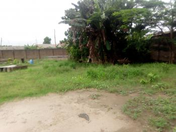 Land in a Developed Area Suitable for Mini Estate in Amule, Amule Ipaja/ayobo, Ipaja, Lagos, Residential Land for Sale