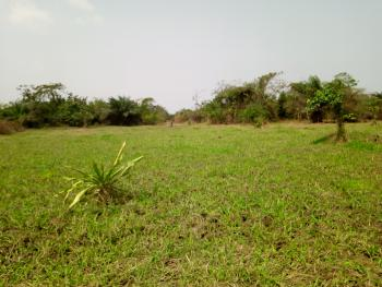 2 Contiguous Plots of Land Fenced, Diamond Estate, Wawa, Before Arepo, Lagos Ibadan Expressway, Mowe Ofada, Ogun, Residential Land for Sale