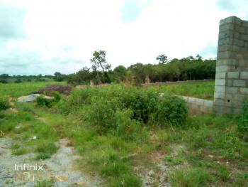 Habitable 1900sqm Land in Life Camp, Behind Paradise Estate, Dape, Abuja, Land for Sale