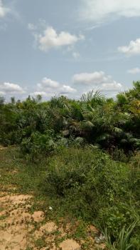 Land, Eleranigbe, Ibeju Lekki, Lagos, Industrial Land for Sale