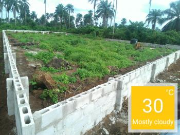 1/2 Acre Farmland, 25 Minutes Drive From Ph International Airport, Ikwerre, Rivers, Commercial Land for Sale