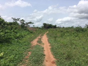 Plot of Land for Sale at Millennium Garden City, Igbesa, Igbesa, Lusada-agbara, Agbara, Ogun, Mixed-use Land for Sale