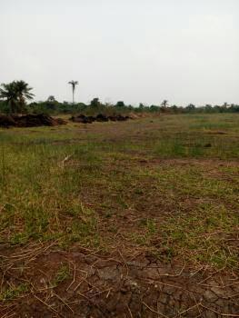 Landed Property, Maraba, Central Business District, Abuja, Mixed-use Land for Sale