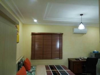 Serviced and Furnished Apartment, Asokoro District, Abuja, Self Contained (single Room) Short Let