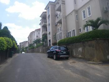 Power Supply (24hrs) Service 2 Bedrooms, Maitama District, Abuja, Flat for Rent